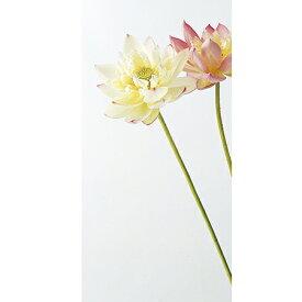 【造花】アスカ/八重ロータス ホワイトピンク/A-30735-1P【01】【01】【取寄】《 造花(アーティフィシャルフラワー) 造花 花材「は行」 ハス(蓮)・ロータス 》