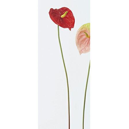 即日 【造花】アスカ/アンスリウム(L) レッド/A-31612-2《 造花(アーティフィシャルフラワー) 造花 花材「あ行」 アンスリューム 》