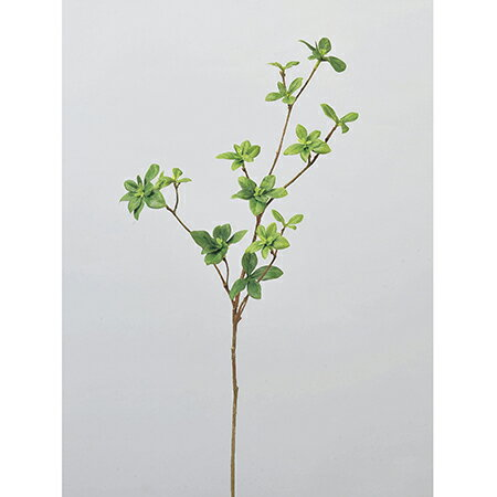 即日★【造花】アスカ/ドウダンピック グリーン/A-41466-51A《 造花(アーティフィシャルフラワー) 造花枝物 ドウダンツツジ 》