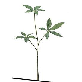 【造花】アスカ/パキラ(S) グリーン/A-46038-51A【01】【01】【取寄】《 造花(アーティフィシャルフラワー) 造花枝物 その他の造花枝物 》