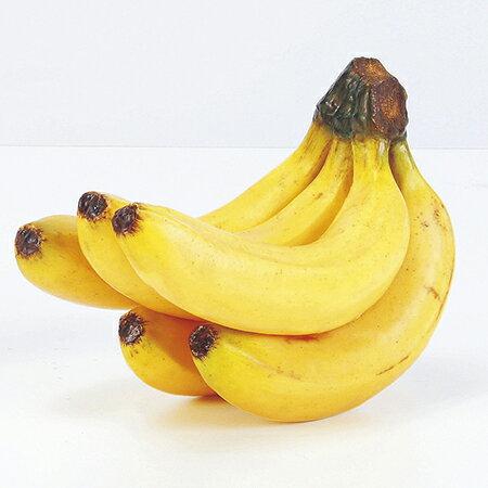 【造花】アスカ/バナナ(5本房) イエロー/A-20255-10【01】【01】【取寄】《 造花(アーティフィシャルフラワー) 造花実物、フェイクフルーツ フルーツ、ベジタブル 》