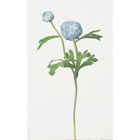 【造花】アスカ/ラナンキュラス×2 シャーベットブルー/A-32143-19S【01】【01】【取寄】《 造花(アーティフィシャルフラワー) 造花 花材「ら行」 ラナンキュラス 》