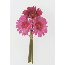 即日 【造花】アスカ/ミニガーベラバンチ(1束3本) ローズ/A-32214-5《 造花(アーティフィシャルフラワー) 造花 花材「か行」 ガーベラ 》