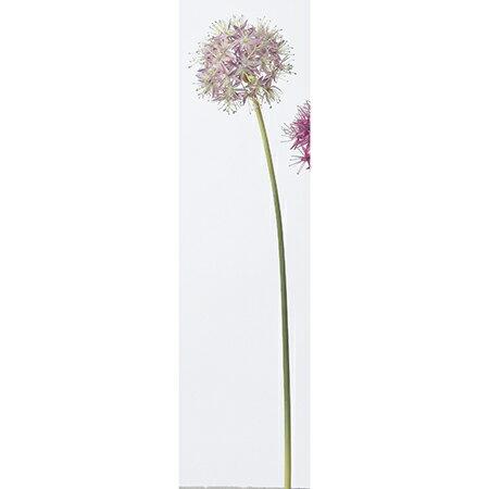 【造花】アスカ/アリウム ホワイトラベンダー/A-32137-6W【01】【取寄】《 造花(アーティフィシャルフラワー) 造花 花材「ら行」 ラベンダー 》