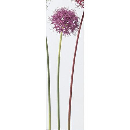 【造花】アスカ/アリウム パープル/A-32137-7【01】【取寄】《 造花(アーティフィシャルフラワー) 造花 花材「あ行」 アリウム 》