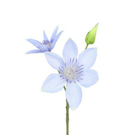 即日 【造花】FIAN/クレマチスショート/FS0006-BLU《 造花(アーティフィシャルフラワー) 造花 花材「か行」 クレマチス 》