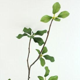 即日 【造花】FIAN/ドウダンツツジ(M)/LS0003-GR《 造花(アーティフィシャルフラワー) 造花枝物 ドウダンツツジ 》