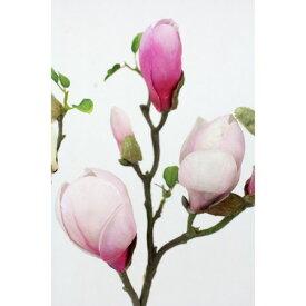 即日 【造花】FIAN/マグノリアウィルソン/FF0020-PNK《 造花(アーティフィシャルフラワー) 造花 花材「ま行」 モクレン(木蓮)・マグノリア 》