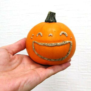 特価◎【生花/即納】かぼちゃ トリック L(プレミアム!文字又は顔付き)[1個]