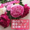 【生花】母の日簡易ラッピング付き♪芍薬ピンクミックス 10本[1セット]