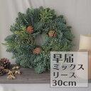 【生花】そのまま飾れる◎【空輸便】オレゴン産キャンドルリング30cm[1個]※届日限定:11/20以降