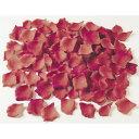 【造花】FLE−0717 ローズペタル レッド/78-390717-8 造花 バラ【01】【取寄】《 造花(アーティフィシャルフラワー)…