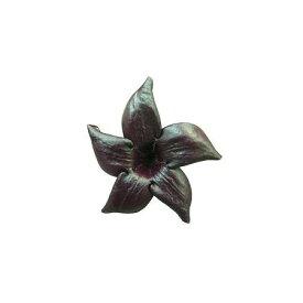 【プリザーブド】南原農園/ジャスミン・メッシ 12輪入り【01】【01】【取寄】《 プリザーブドフラワー プリザーブドフラワー花材 ジャスミン 》