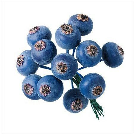 即日 大地農園/ブルーベリー・大 12本 ブルー/23742-600《 花資材・道具 フラワーピック フルーツピック 》