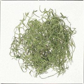 即日 【ドライ】大地農園/スパニッシュモス 小袋 50g グリーン/61061-700ドライフラワー ドライ葉物 モス・苔 手作り 材料