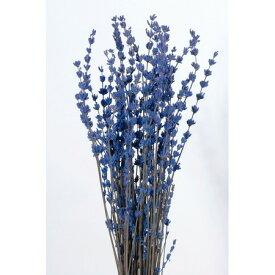 即日 【プリザーブド】大地農園/ラベンダー・プリザーブド 50g ブルー/03620-600《 プリザーブドフラワー プリザーブドフラワー花材 小花 》