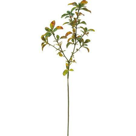 【造花】YDM/ボックスウッドスプレー グリーンブラウン/FG4620-GBR【01】【01】【取寄】《造花(アーティフィシャルフラワー) 造花葉物 ボックスウッド》