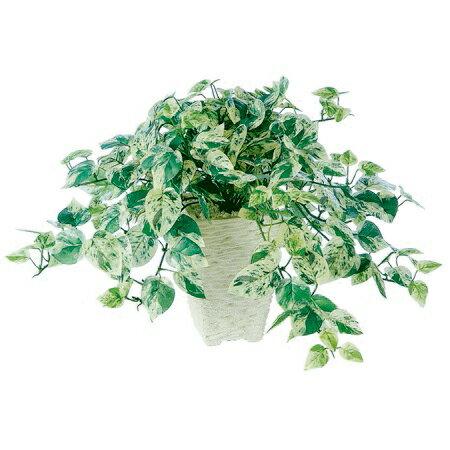 【人工観葉植物】ミニマーブルポトス(器タイプ:ブッシュ)91468※画像は器タイプ(Pスクエア)器要確認【07】【取寄】《 造花(人工観葉植物) 人工観葉植物「か行」 カジュアルポット 》