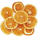 即日 【ドライ】コアトレーディング/オレンジスライス 約50g/18300《 ドライフラワー ドライ実物&フルーツ フルーツ…