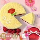 母の日 春のお祝い 新生活 退職祝い 送料無料 天使のドゥーブルフロマージュ 4号 誕生日 バースデーケーキ 出産祝い …