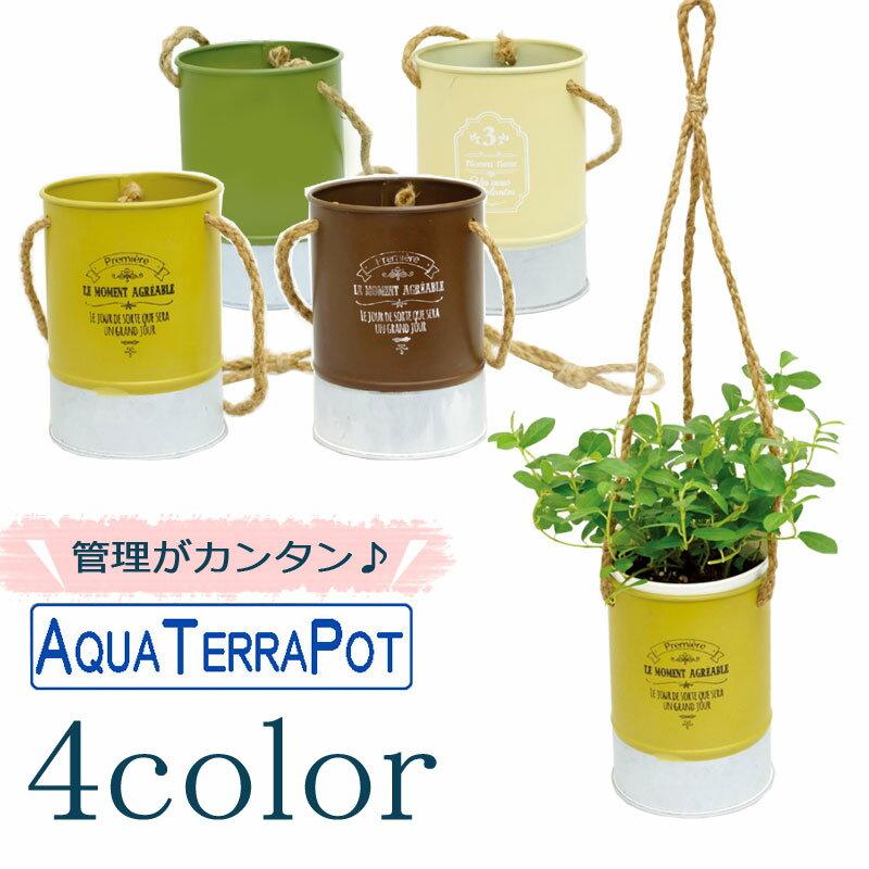 インテリアグリーン アクアテラポット ツートンブリキハンギング10.5 全4色 ギフト 底面給水 観葉植物 シュガーバイン アイビー ヘデラ ペペロミア ワイヤープランツ