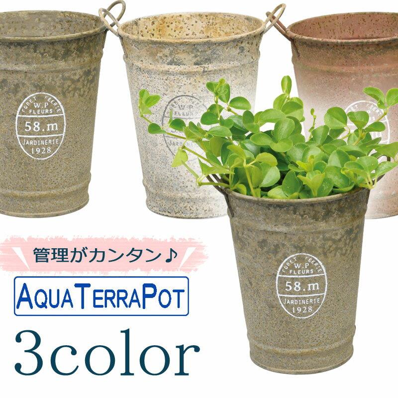 インテリアグリーン アクアテラポット ブロカントティン10.5 全3色 ギフト 底面給水 観葉植物 シュガーバイン アイビー ヘデラ ペペロミア ワイヤープランツ