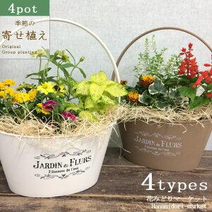 【セット】寄せ植え季節の花の寄せ植え バスケットプランター 28型 花苗4ポット+プラスチック鉢 投げ込み 底面給水 アクアセル ひのき木綿 プレゼント ギフト