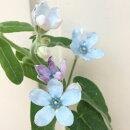 【切り花向き苗】オキシペタラムブルースター3,5号ポットラベル苗宿根層