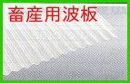 【期間限定ポイント2倍】【即納】<送料無料!> タキロン 畜産波板 【厚さ1.0ミリ 畜産ナミイタ】 チクサンナミL10 ホワイト 鉄板小波 32波 6尺 幅655ミリX長さ1820ミリ 10枚セット 屋根材 外壁材に!【代引き不可】【着時間指定不可】