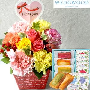 花とスイーツのセットthanksアレンジとフィナンシェ&「ウェッジウッド」ティーバッグセットWEDGWOOD(ウェッジウッド)送料無料生花 花束 メッセージカードアレンジメント 花 プレゼント 贈り