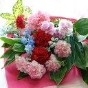 【送料無料】【母の日 花 プレゼント】2色のカーネーションの花束(ブーケ)日頃の感謝を伝える母の日ギフト!赤(レッド)とピンク、定番…