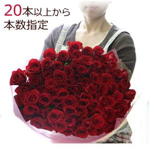 バラの花束【20本以上で本数指定承ります】バラ 生花 ...