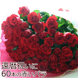 【送料無料】長寿のお祝い・還暦祝いに赤いバラ! 赤バラ 60本の花束(等級M)