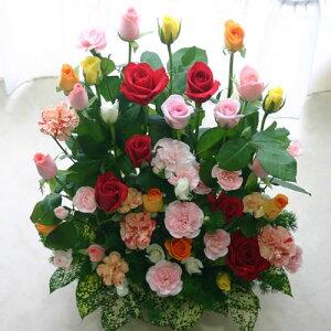 ミックスカラーのバラ30本と季節のお花のアレンジ