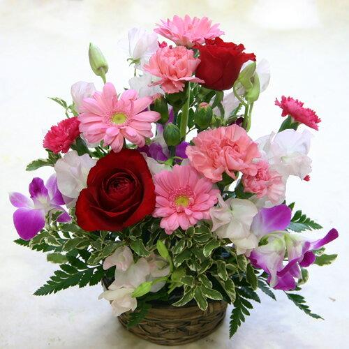 【フラワーアレンジメント】ハニーハニー【誕生日や発表会、記念日のお祝いに/出産祝い、新築祝いに/送別会のプレゼントに/お悔やみ、お供えに/お見舞いの差し入れに/お礼・ご挨拶に】プチギフトに、季節のお花のフラワーギフト