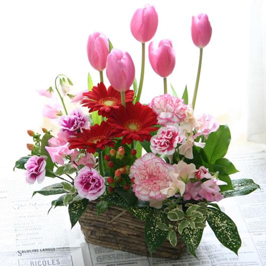 ピンクのチューリップと春の花のフラワーギフト【春限定フラワーアレンジメント】チューリップリズム【誕生日や記念日のお祝いに/お見舞いの差し入れに/結婚祝い・出産祝いの贈り物に/合格祝い・卒業祝いに/送別会のお花に/ホワイトデーに】【送料無料】