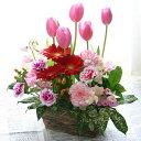 ピンクのチューリップと春の花のフラワーギフト【春限定フラワーアレンジメント】チューリップリズム【誕生日や記念日のお祝いに/お見…