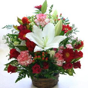 誕生日のお祝いに 大輪の白ユリ(カサブランカなどユリ/ゆり/百合)のお祝い花(フラワーアレンジメント/花束)【誕生日 発表会 記念日 結婚祝い 出産祝い 新築祝い 送別会 楽屋花 開店祝い 花