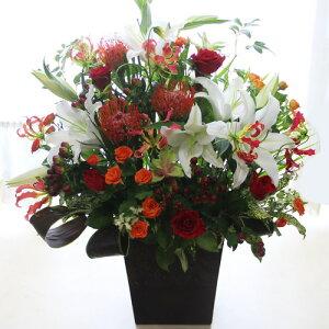 ■【お祝い 花】大輪の白ユリ(カサブランカなどユリ/ゆり/百合)のお祝い花(フラワーアレンジメント/花束)【誕生日・発表会・記念日のお祝い/結婚祝い・新築祝い/送別会のプレゼントに/楽