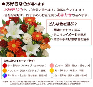 大輪白ユリお祝い花-色-