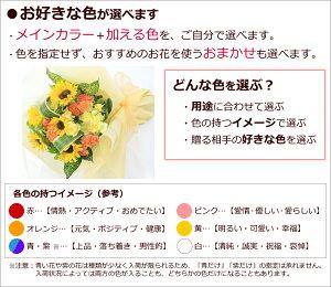 おまかせギフト/色