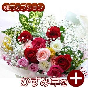 【生花ギフト用オプション】かすみ草(霞草/かすみそう/カスミソウ)花束やアレンジメントの添え花に白いカスミ草をプラスして、豪華にボリュームアップ!【誕生日|発表会|記念日|お祝い|