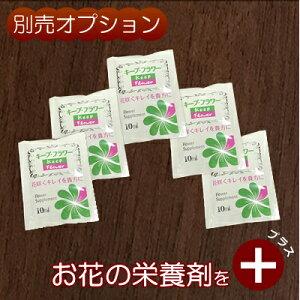 お花の栄養剤(キープフラワー)5個セット