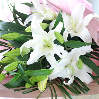Hanako rakuten global market birthday flower gift female floral buy it and earn 213 points about points negle Choice Image