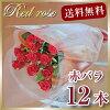 생일 꽃다발 레드 장미 꽃다발 12 개의 꽃다발