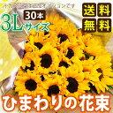 Himawari8003l