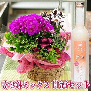 還暦 古希 長寿祝い 花 ギフト 誕生日プレゼント 寄せ植え 観葉植物 送料無料 宅配 配送 おまかせ寄せ鉢ミックス 甘酒セット