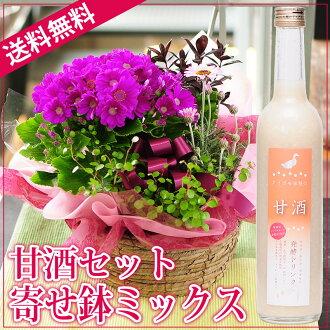 把花甲古稀长寿祝贺花礼物生日礼物送到,把钵礼物送货上门发送委托给,送到,设置钵混合物甜酒