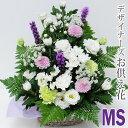 Osodc ms