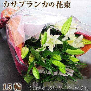 大輪カサブランカ(百合)花束ギフト誕生日・結婚式花・お供え花・誕生日プレゼント